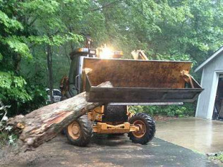tree removal in chapel hill nc
